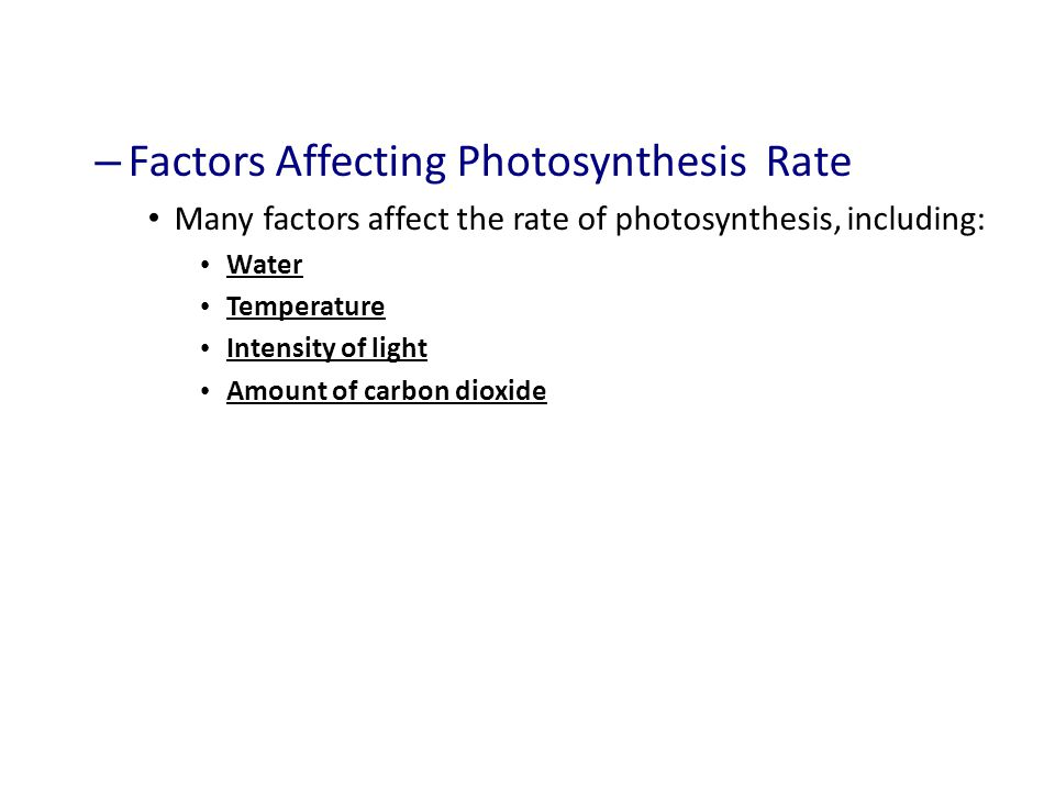 Factors Affecting Photosynthesis Rate