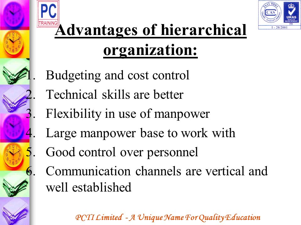 Advantages of hierarchical organization: