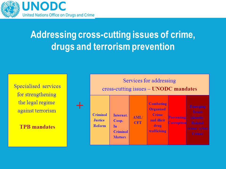 Addressing cross-cutting issues of crime, drugs and terrorism prevention