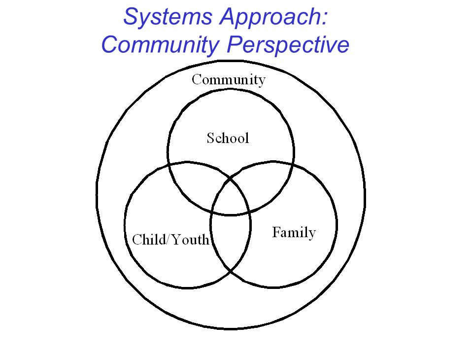 Systems Approach: Community Perspective