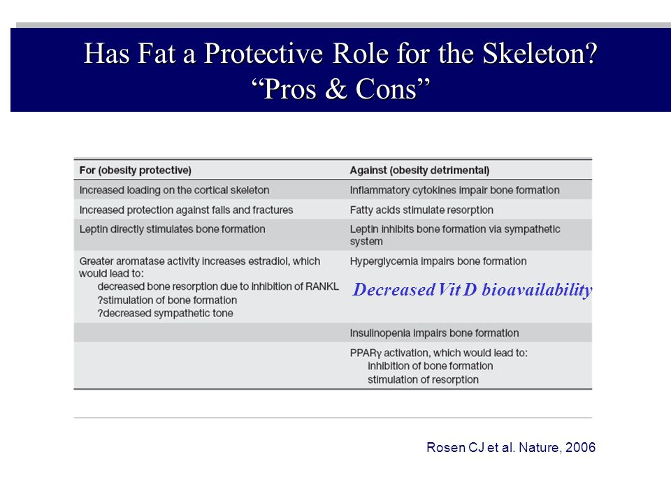 Has Fat a Protective Role for the Skeleton Pros & Cons