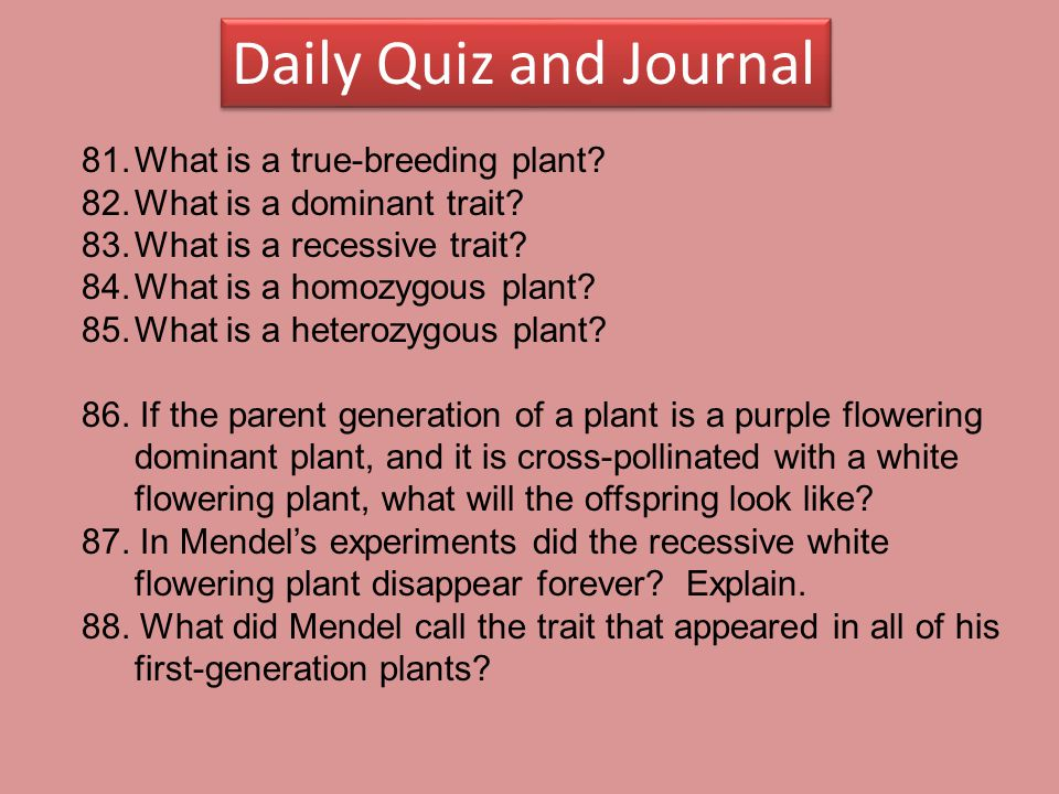 Daily Quiz and Journal What is a true-breeding plant