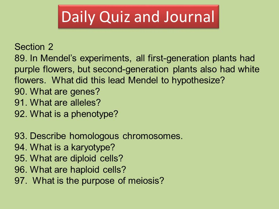 Daily Quiz and Journal Section 2