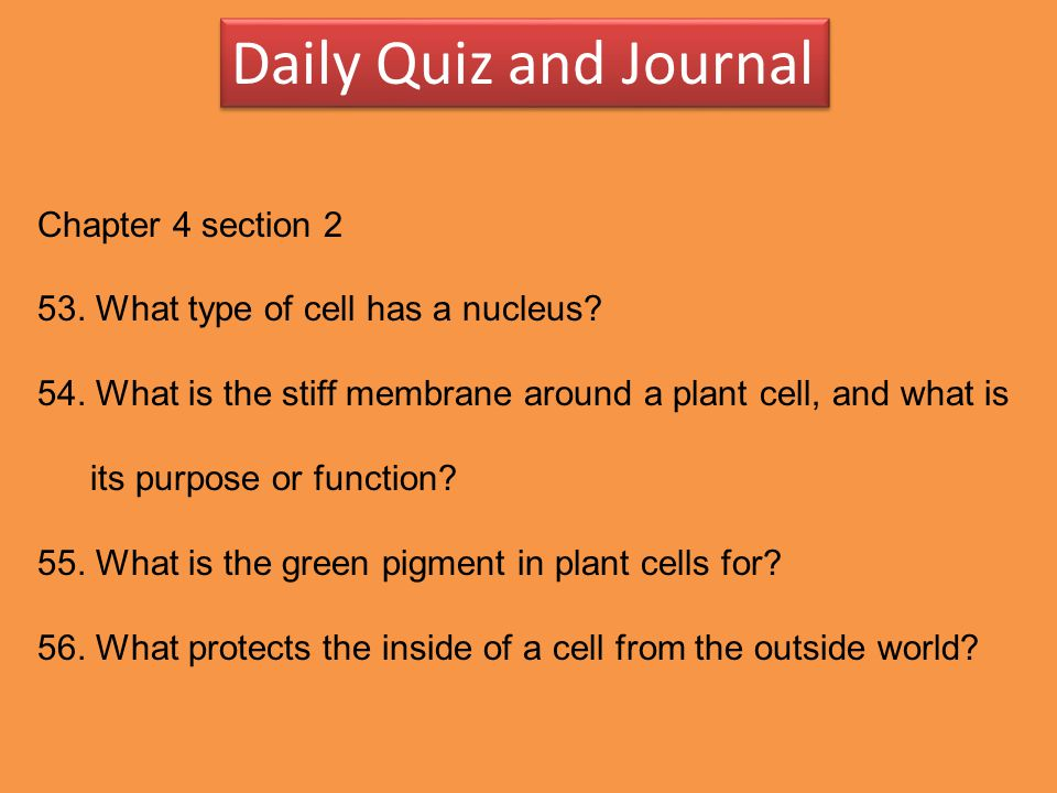 Daily Quiz and Journal Chapter 4 section 2