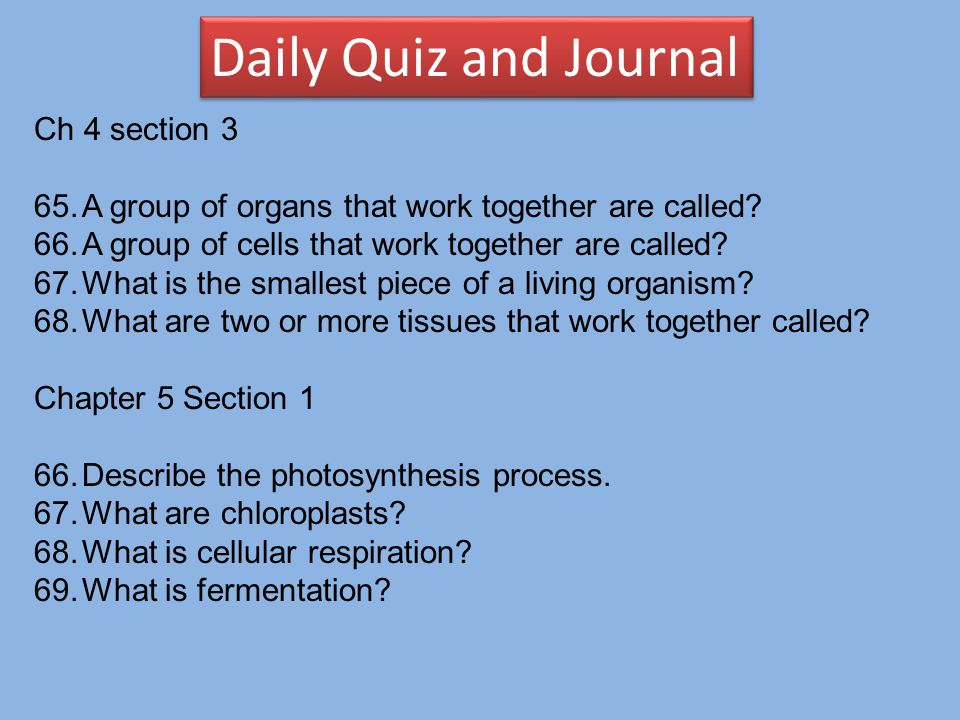 Daily Quiz and Journal Ch 4 section 3