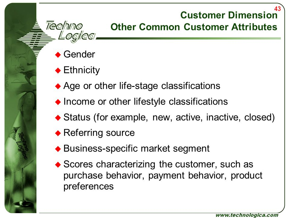 Customer Dimension Other Common Customer Attributes