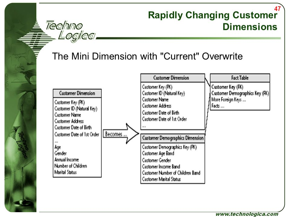 Rapidly Changing Customer Dimensions