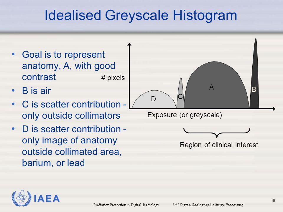Idealised Greyscale Histogram