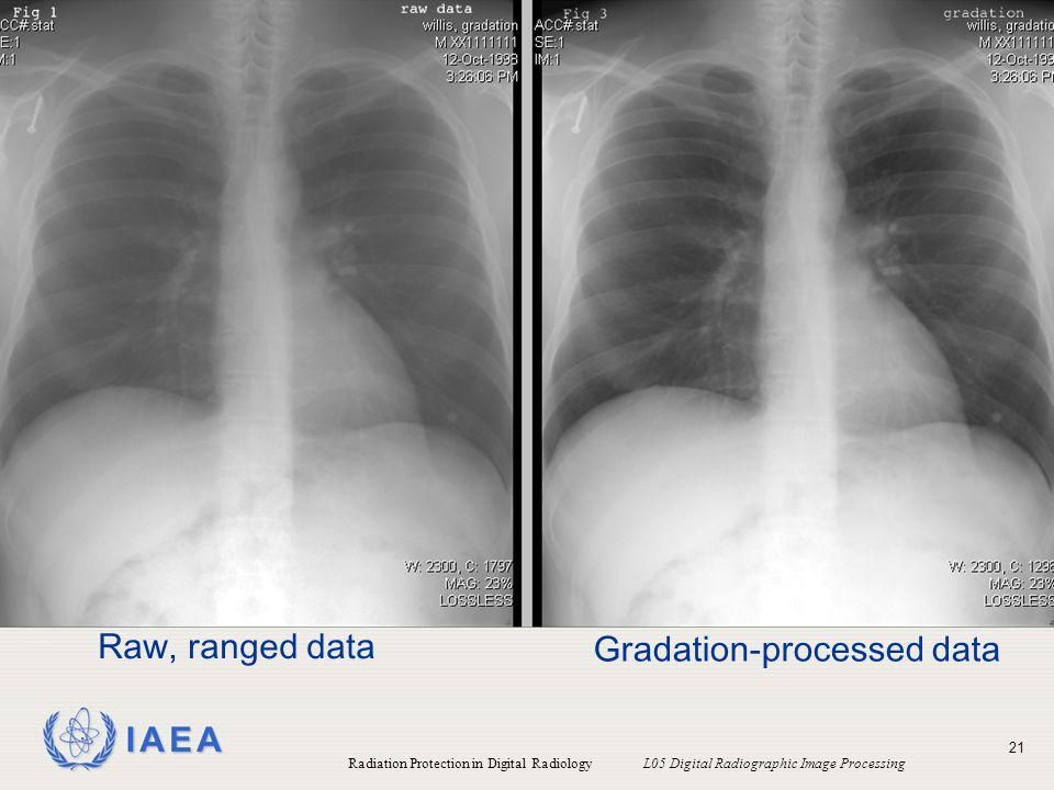 Gradation-processed data