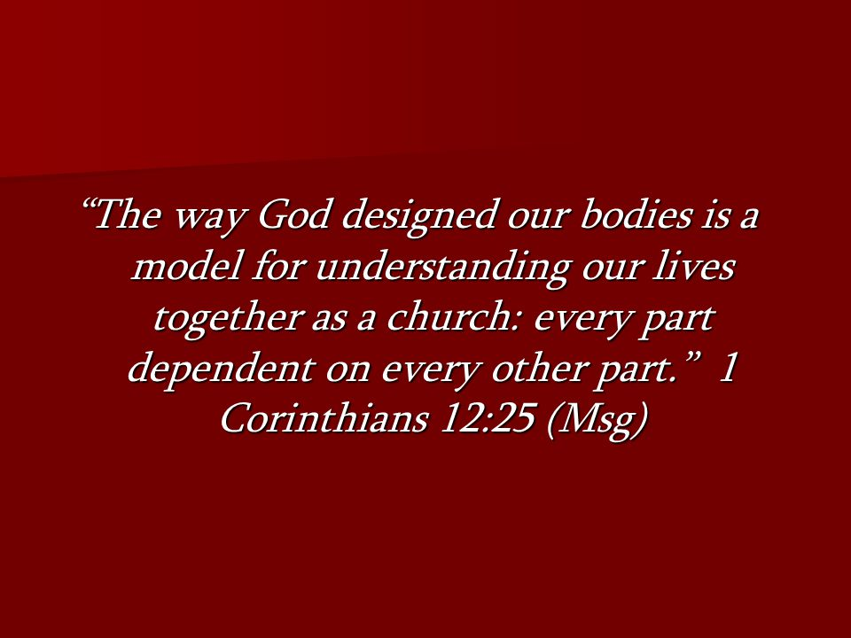 The way God designed our bodies is a model for understanding our lives together as a church: every part dependent on every other part. 1 Corinthians 12:25 (Msg)