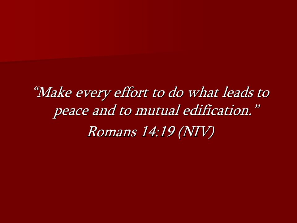 Make every effort to do what leads to peace and to mutual edification