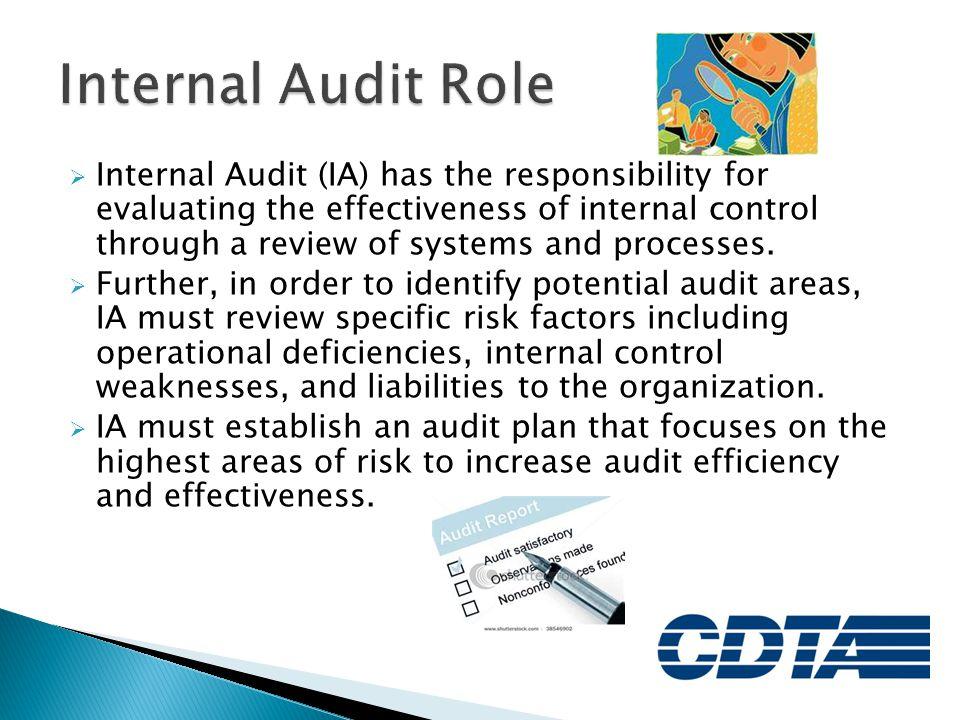 Internal Audit Role