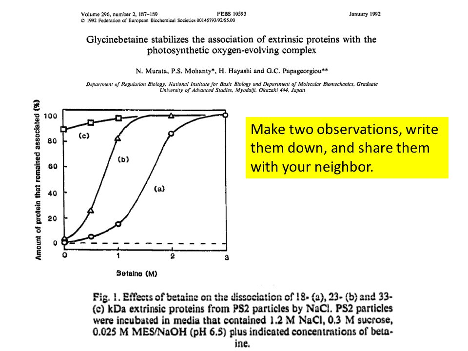 Make two observations, write them down, and share them with your neighbor.