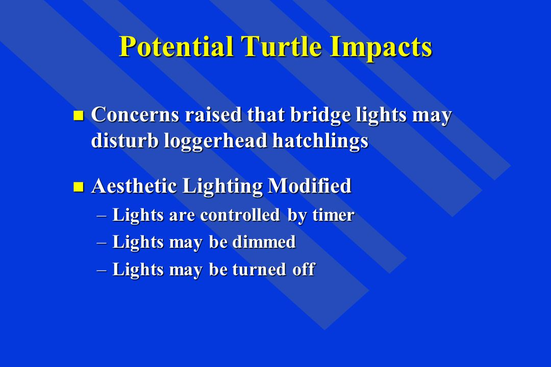 Potential Turtle Impacts