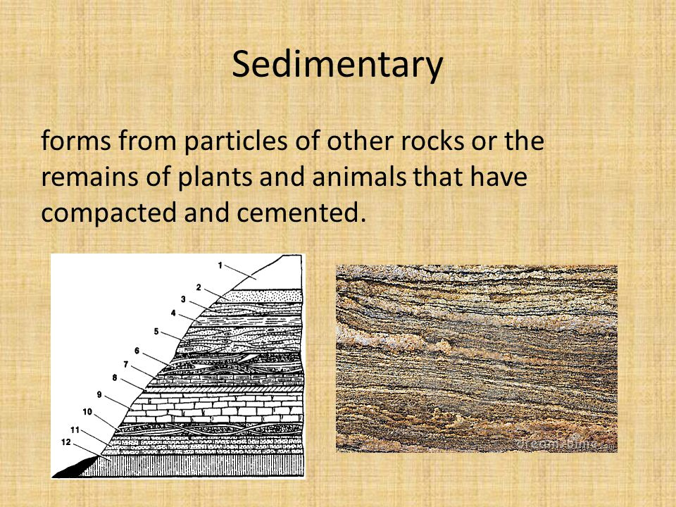 Sedimentary forms from particles of other rocks or the remains of plants and animals that have compacted and cemented.