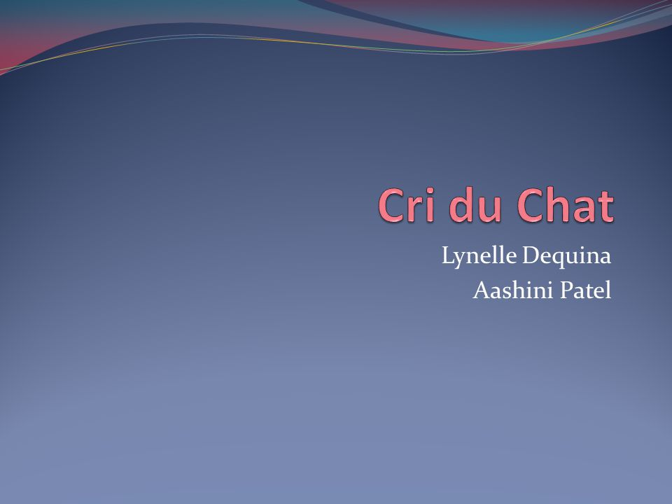 Lynelle Dequina Aashini Patel
