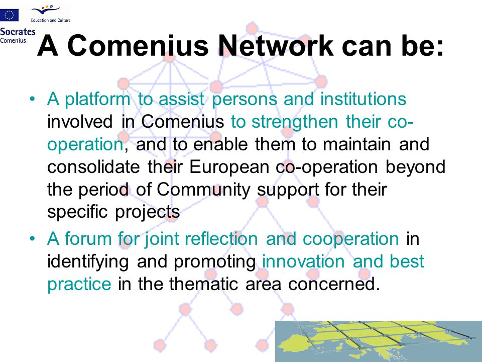 A Comenius Network can be: