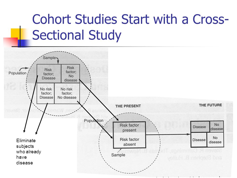 Cohort Studies Start with a Cross-Sectional Study