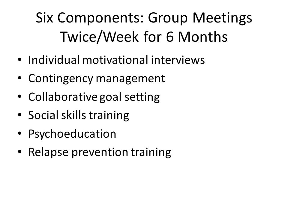 Six Components: Group Meetings Twice/Week for 6 Months