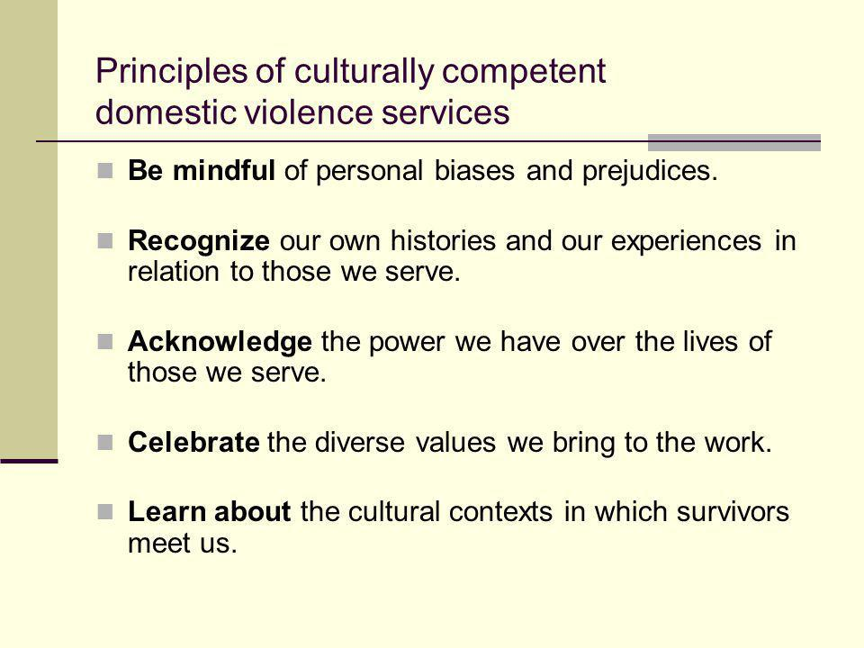 Principles of culturally competent domestic violence services