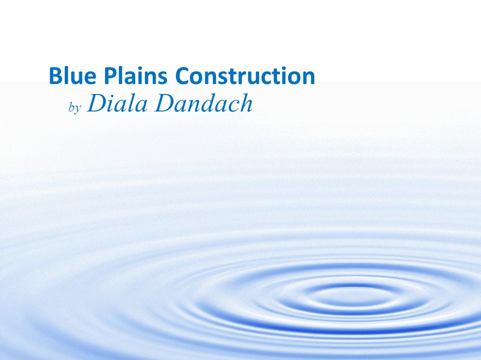 Blue Plains Construction by Diala Dandach