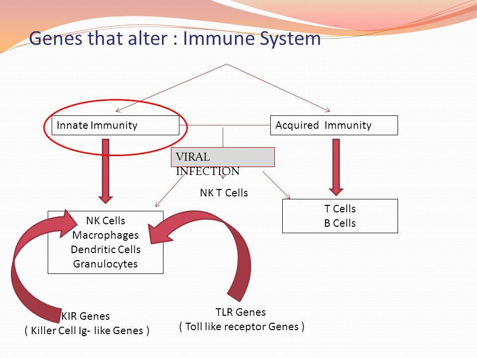 Genes that alter : Immune System
