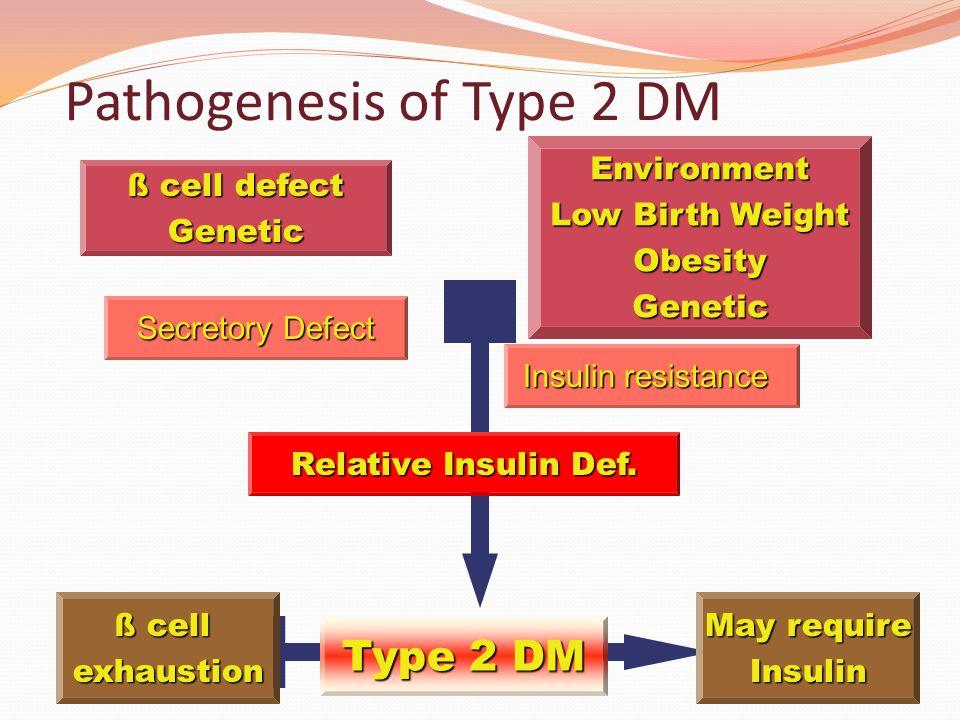 Pathogenesis of Type 2 DM