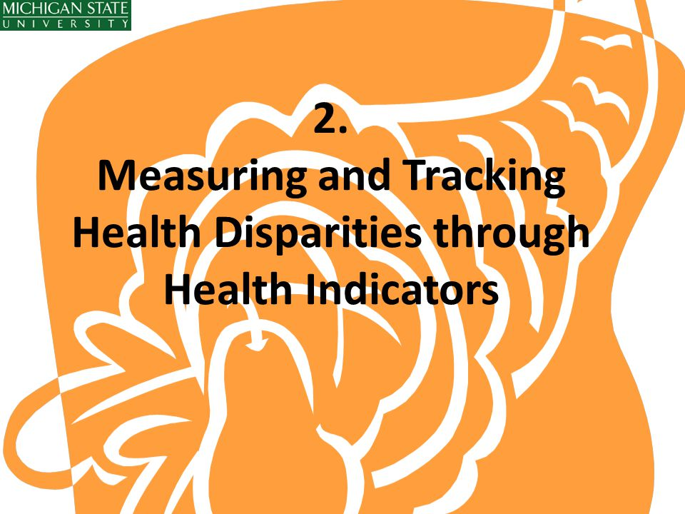 2. Measuring and Tracking Health Disparities through Health Indicators