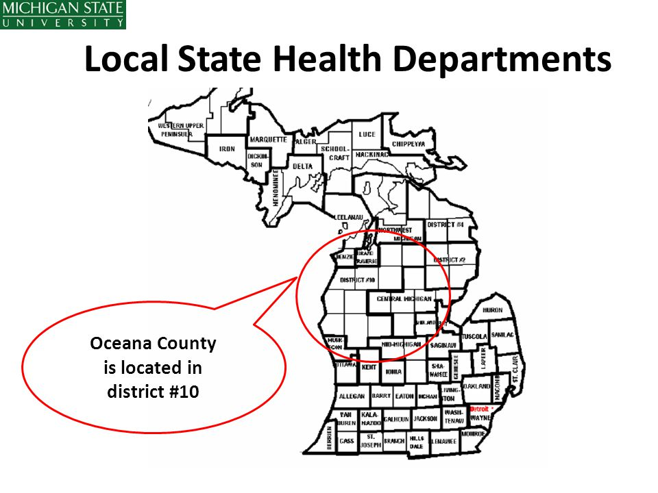 Local State Health Departments