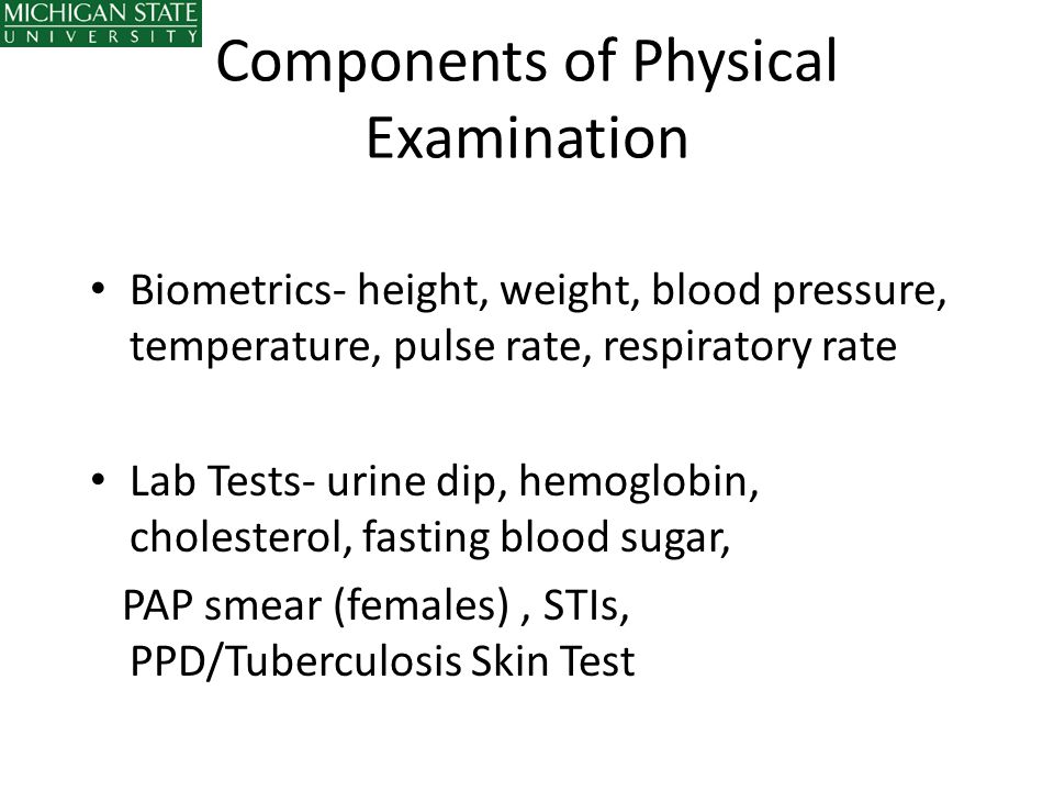 Components of Physical Examination