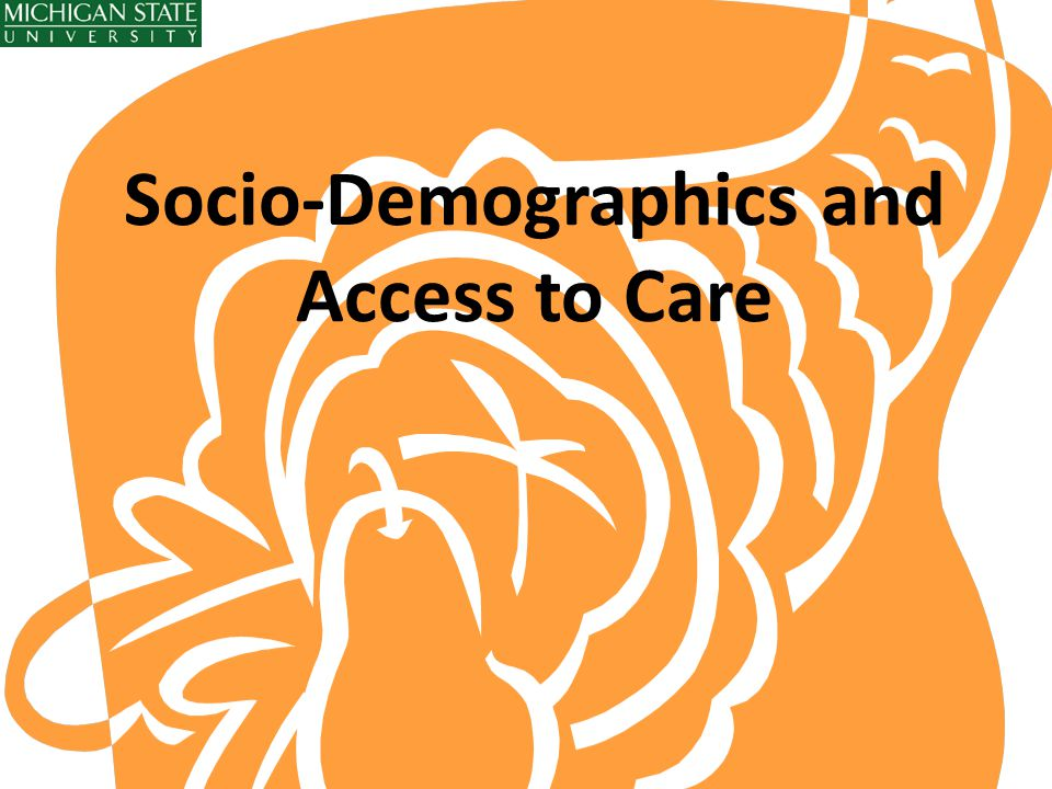 Socio-Demographics and Access to Care
