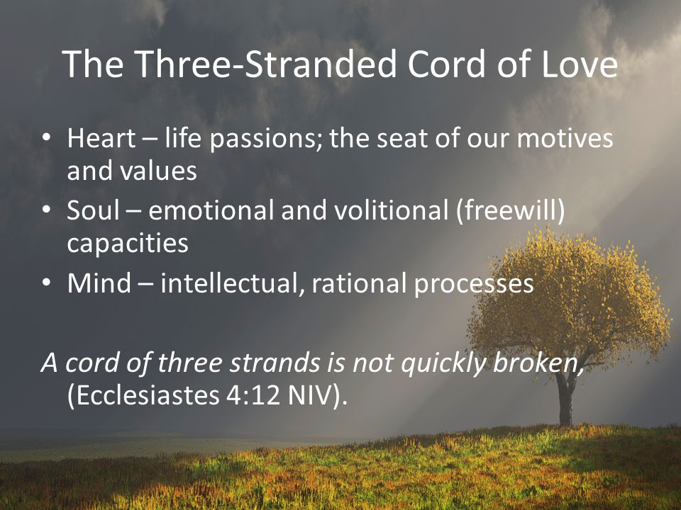 The Three-Stranded Cord of Love
