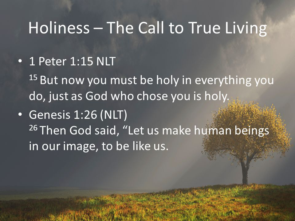 Holiness – The Call to True Living