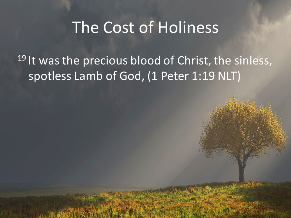 The Cost of Holiness 19 It was the precious blood of Christ, the sinless, spotless Lamb of God, (1 Peter 1:19 NLT)