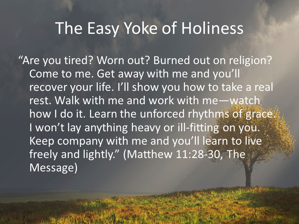 The Easy Yoke of Holiness