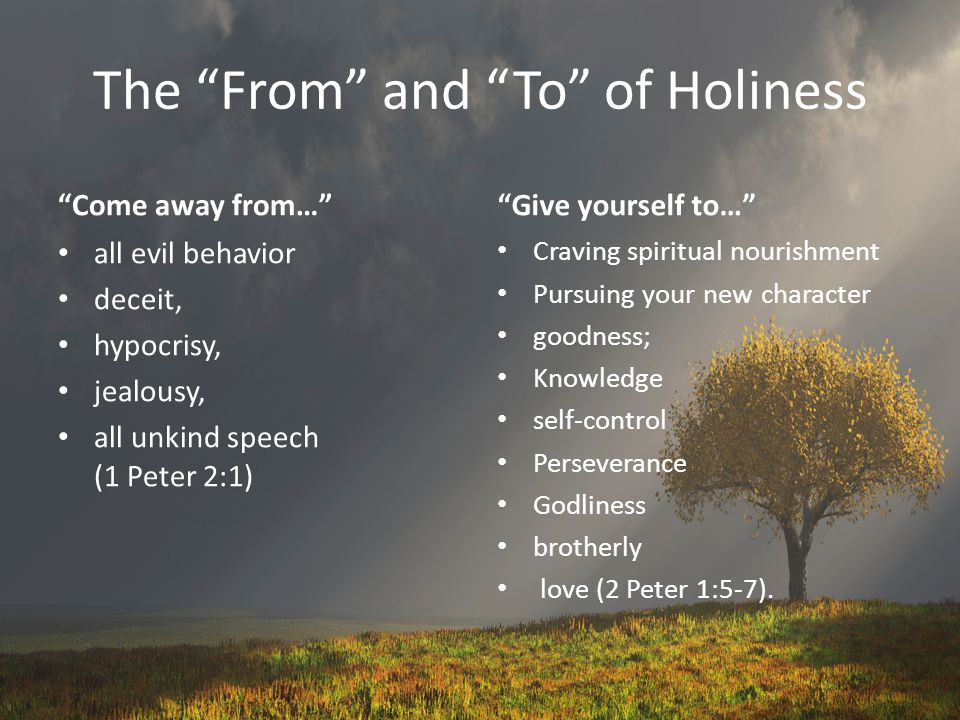 The From and To of Holiness