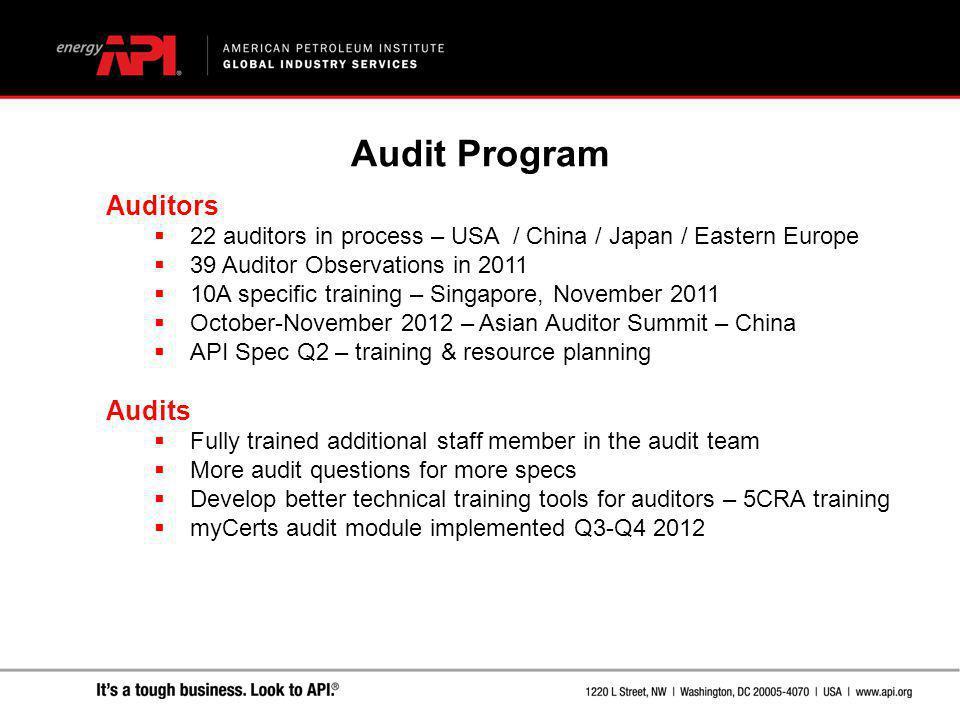 Audit Program Auditors Audits