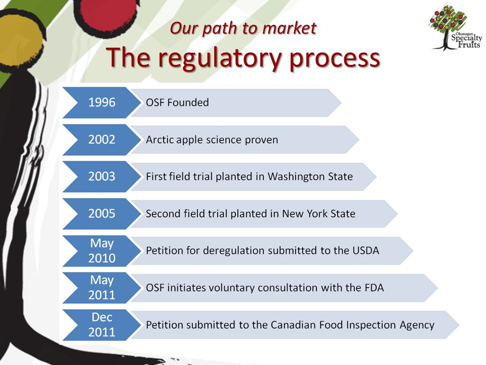 Our path to market The regulatory process