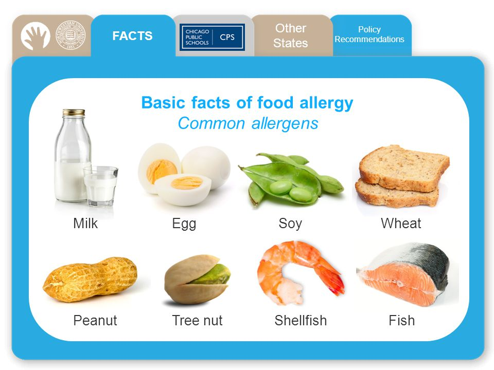 Basic facts of food allergy Common allergens