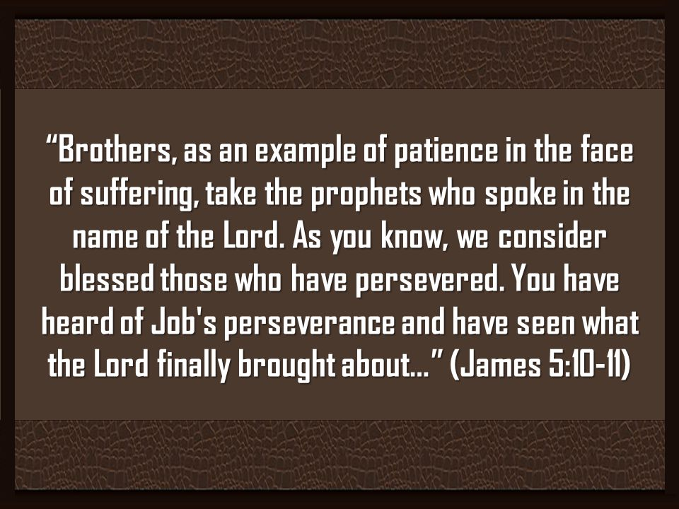 Brothers, as an example of patience in the face of suffering, take the prophets who spoke in the name of the Lord.