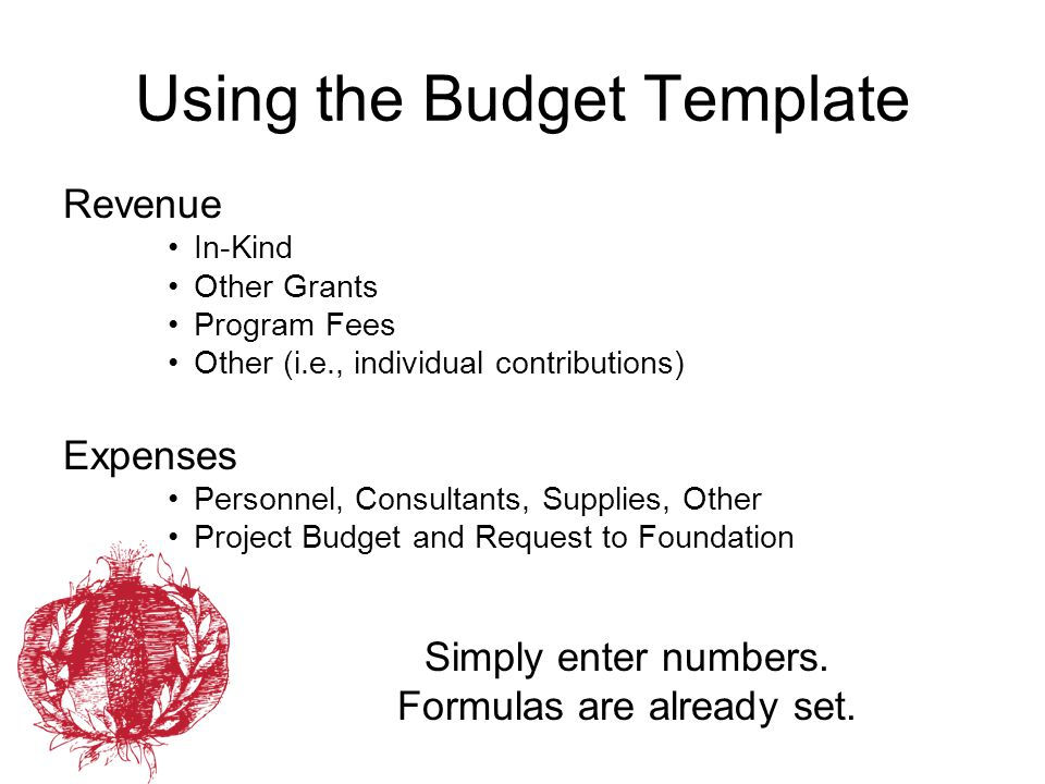 Using the Budget Template