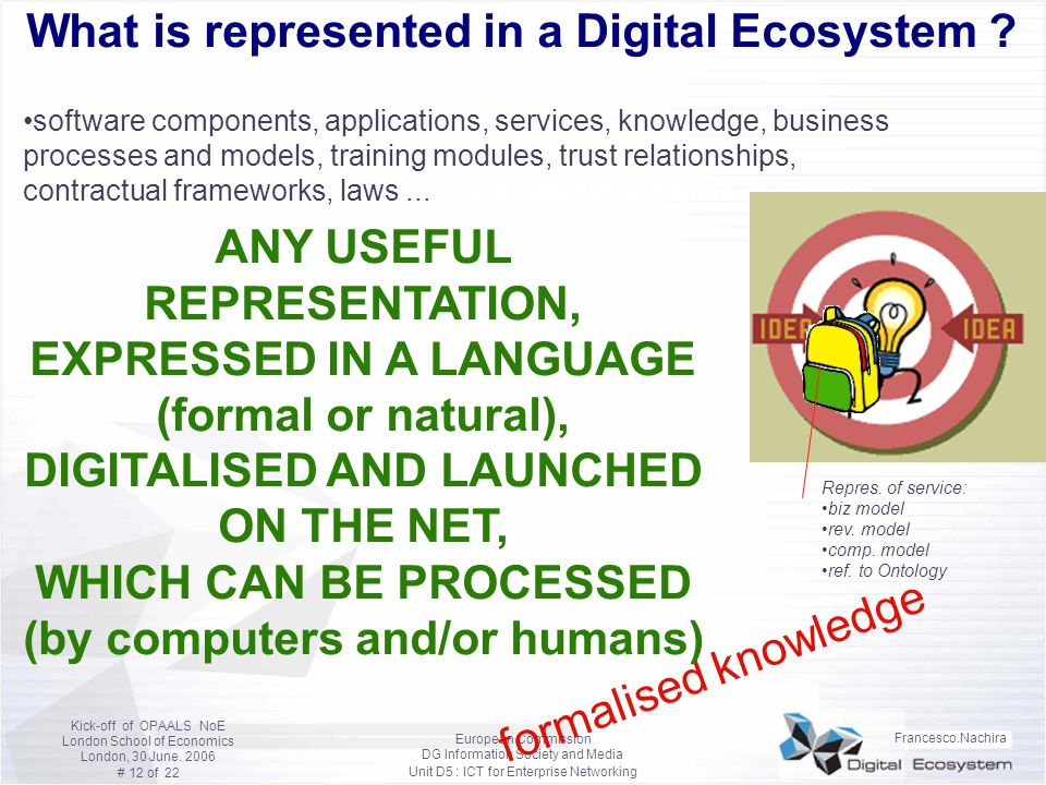 What is represented in a Digital Ecosystem