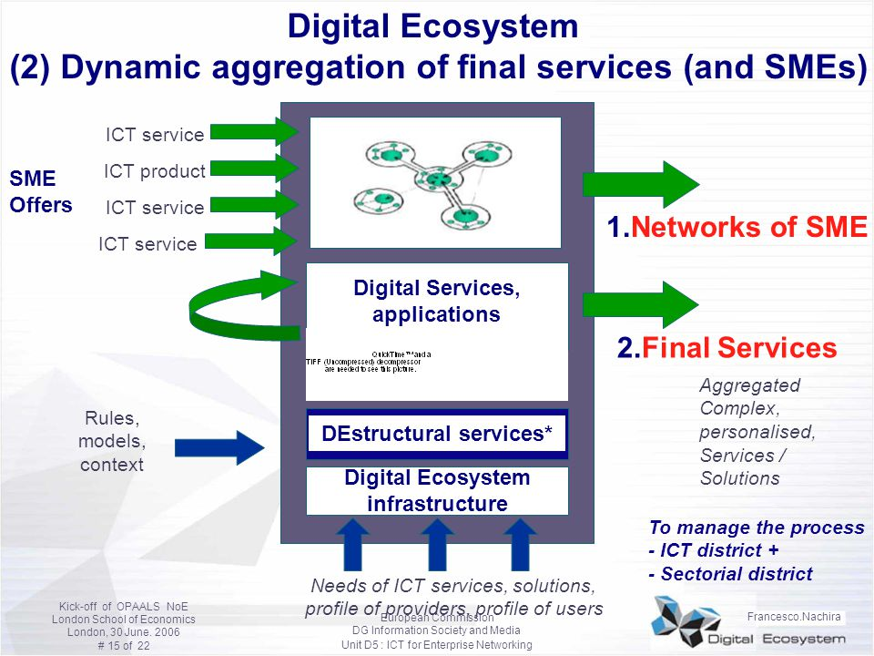 Digital Ecosystem (2) Dynamic aggregation of final services (and SMEs)