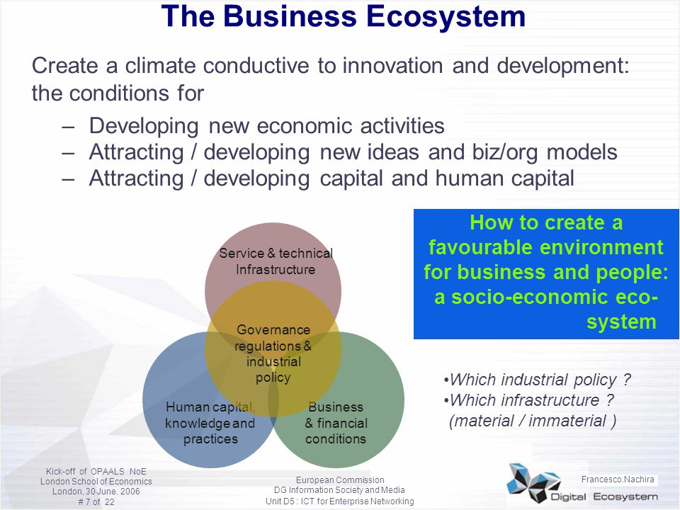 The Business Ecosystem
