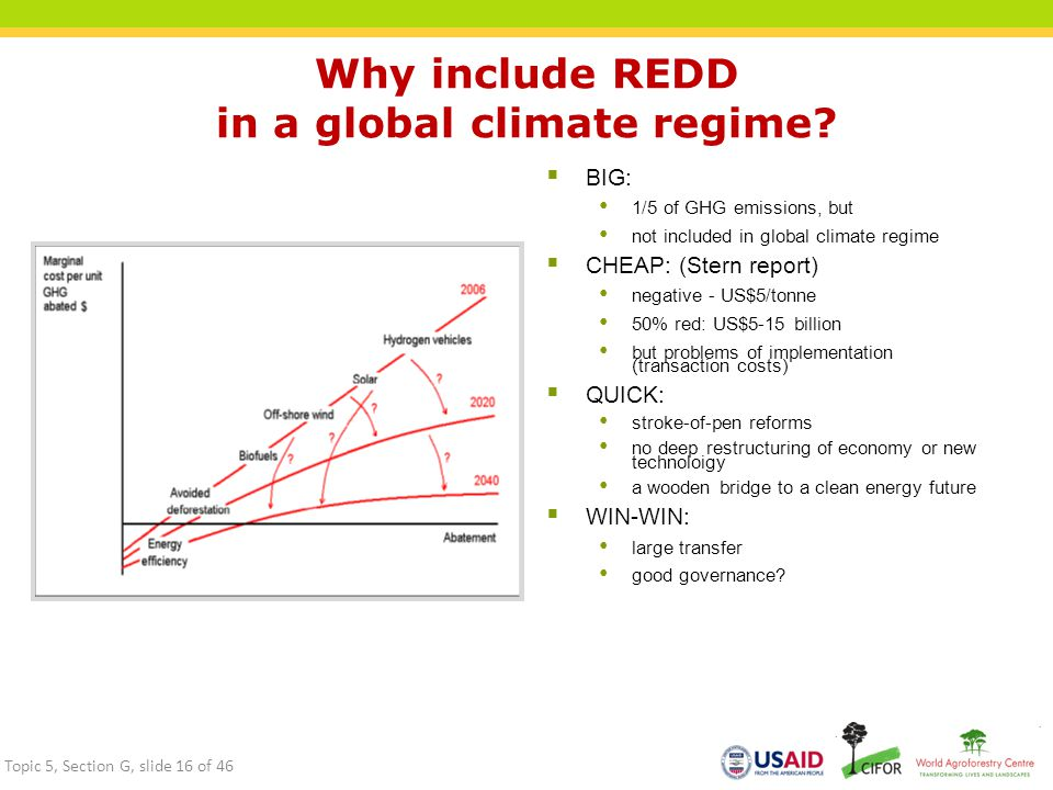 Why include REDD in a global climate regime