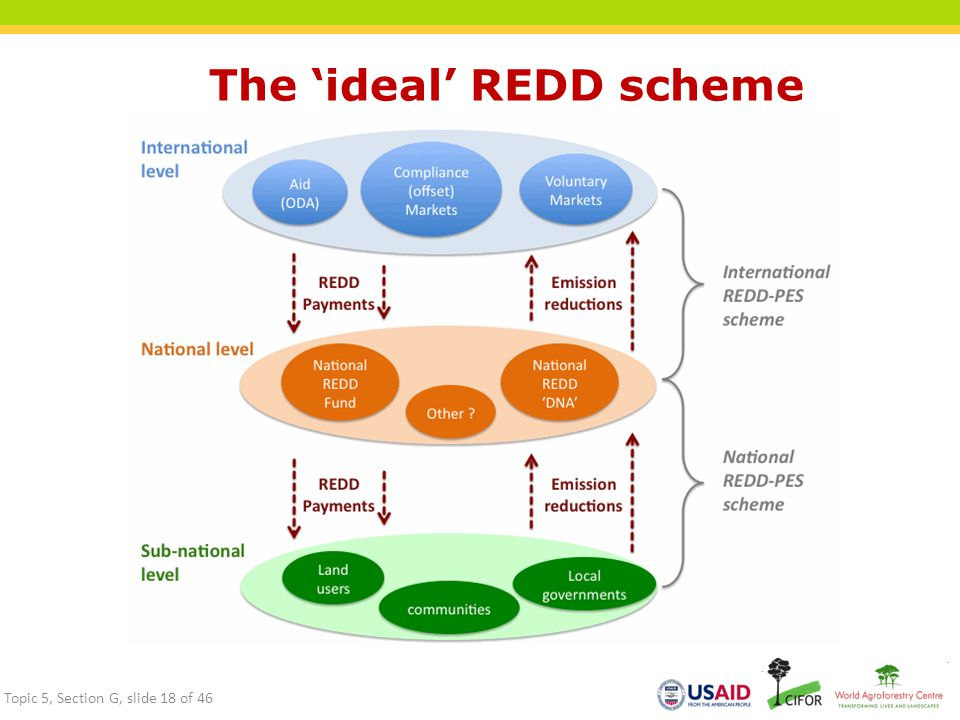 The 'ideal' REDD scheme