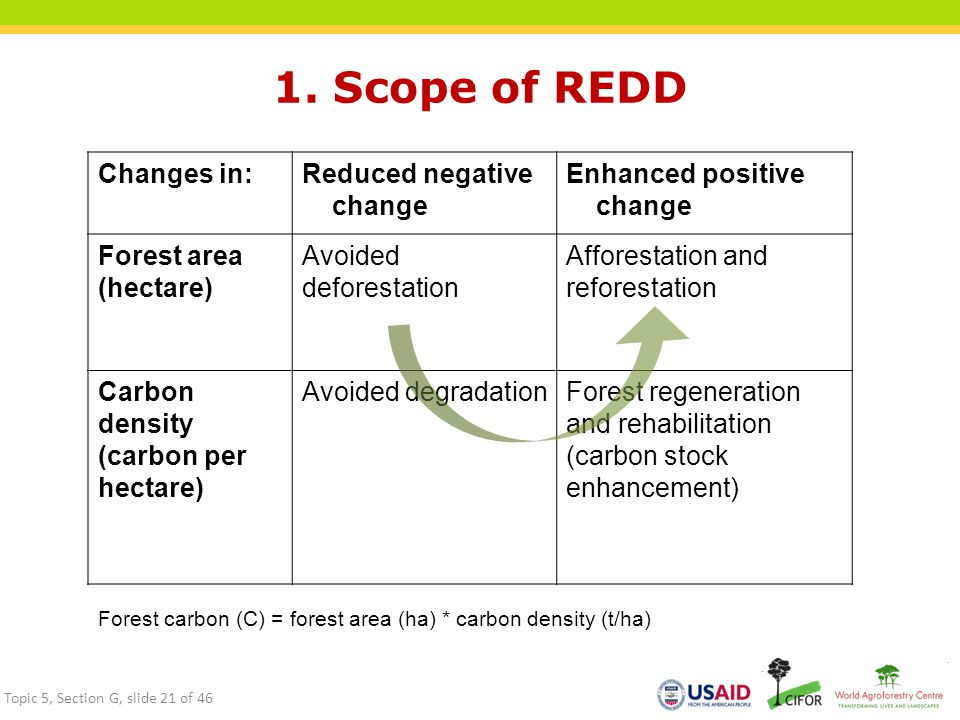 1. Scope of REDD Changes in: Reduced negative change