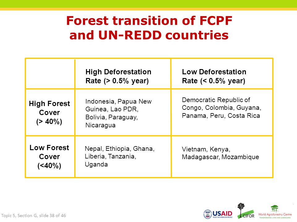 Forest transition of FCPF and UN-REDD countries
