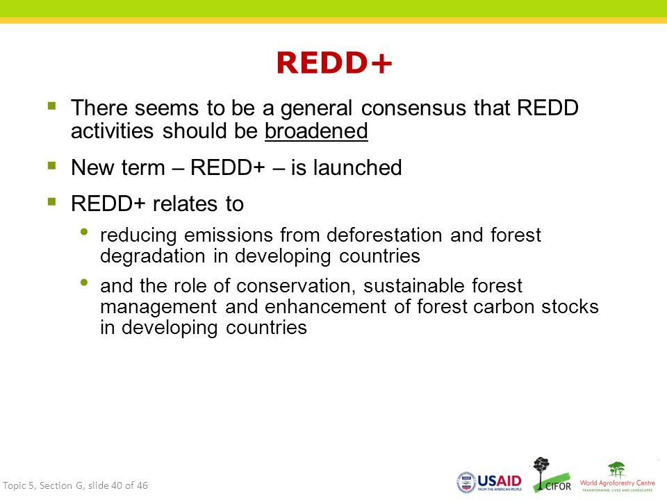 REDD+ There seems to be a general consensus that REDD activities should be broadened. New term – REDD+ – is launched.