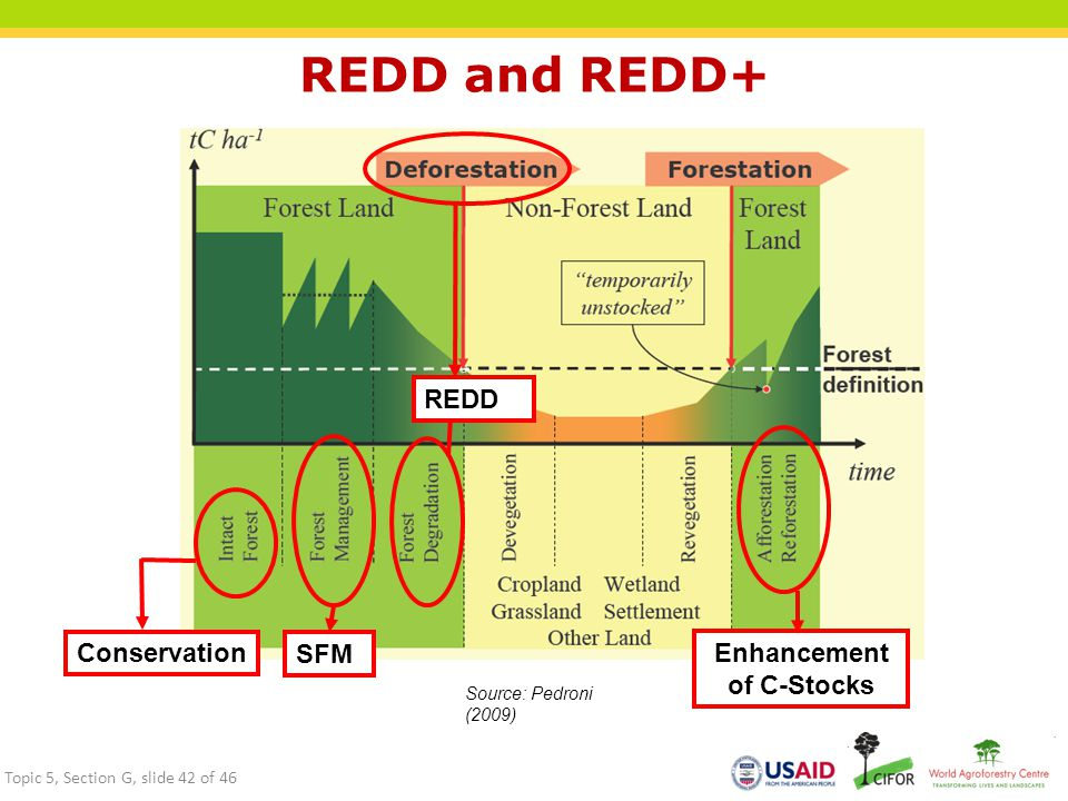 REDD and REDD+ REDD Conservation SFM Enhancement of C-Stocks